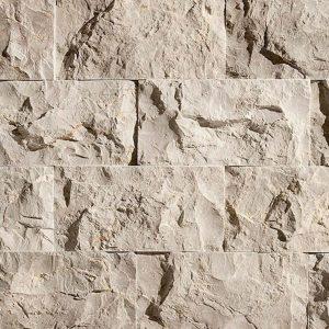 erth-splitface-fossil